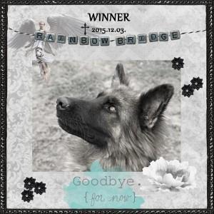 Winner_inmemo