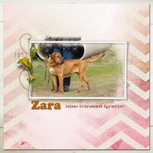 Zara_2013Maj