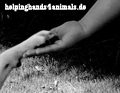 helpinghands w