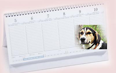 Adományodért naptárat!