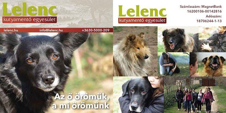 Letölthető Lelenc prospektus 2015